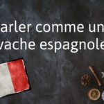 French phrase of the day: Parler comme une vache espagnole